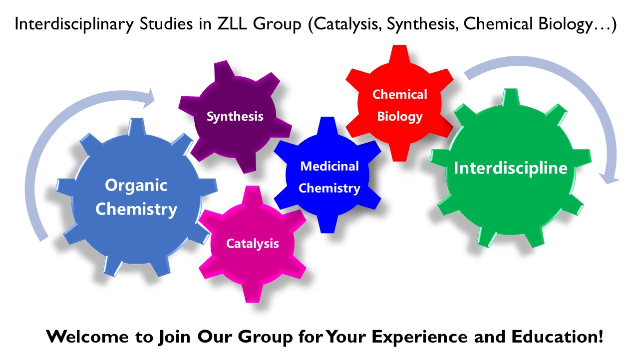 Research in ZLL Group